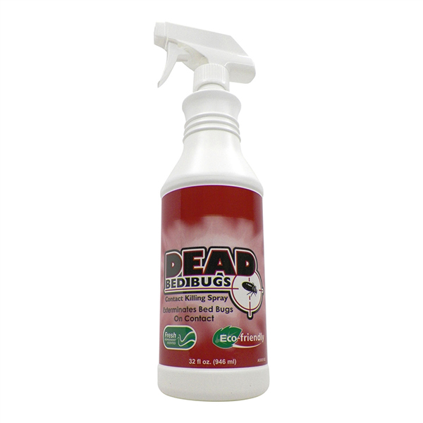 Can Salt Kill Bed Bugs How I Rid Raid Ant Roach