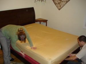 How To Get Rid Of Bed Bugs Cheap And Fast