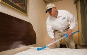 How To Get Rid Of Bed Bugs Completely