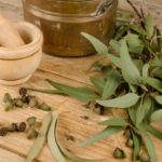 Best Uses Eucalyptus Oils Benefits