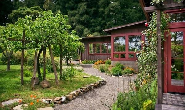 Backyard Ideas Cheap