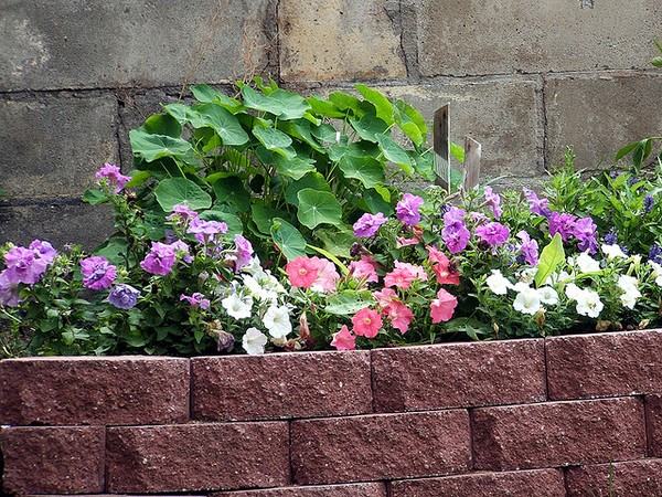 Brick Garden Edging Ideas Melbourne