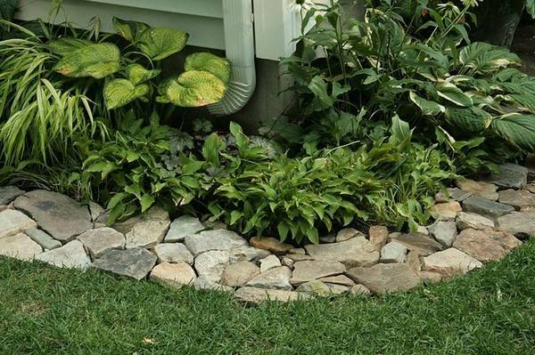 Concrete Lawn Edging Ideas
