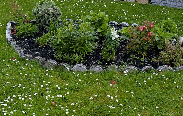 Inexpensive Lawn Edging Ideas Mulch