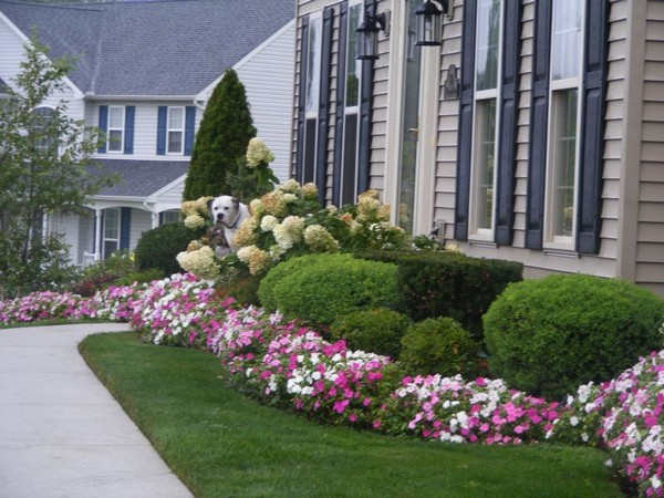 100 landscaping ideas for front yards and backyards for Front yard bush ideas