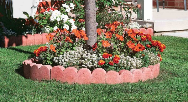 Scalloped Lawn Edging Ideas Australia