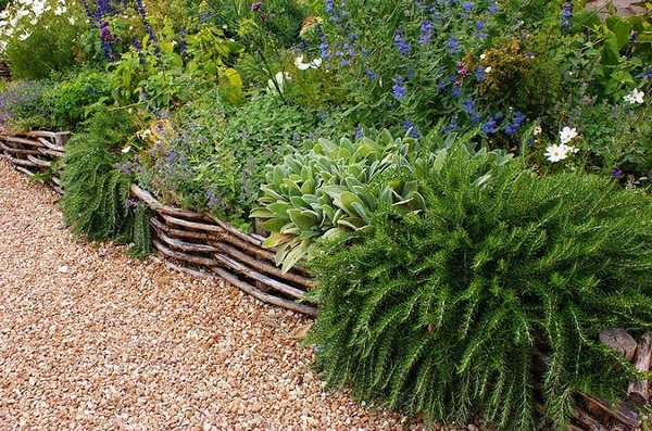 Wattle Lawn Edging Ideas