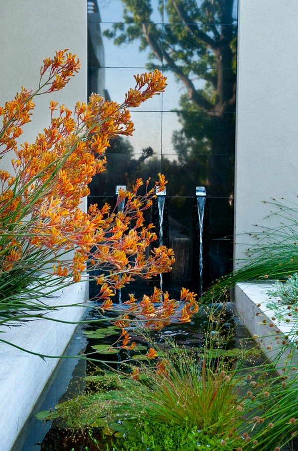 41 Inspiring Garden Water Features with Images - Planted Well