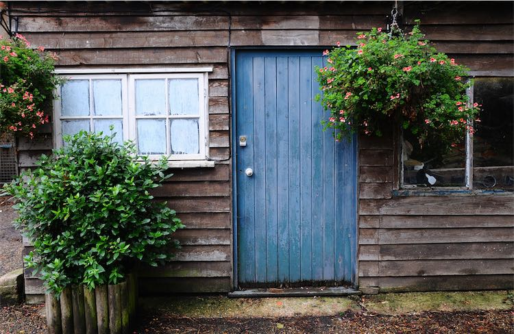 10 Best Affordable Garden Sheds to Buy this Summer - Planted Well