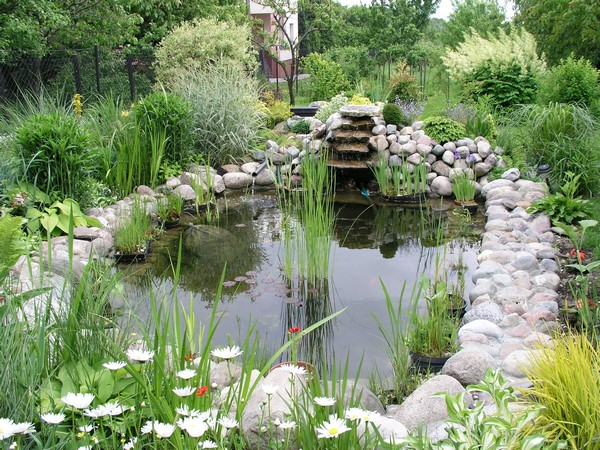 Homebase Water Features