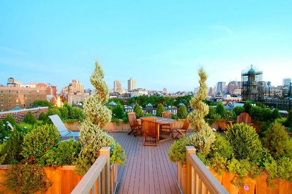 Amazing Urban Garden