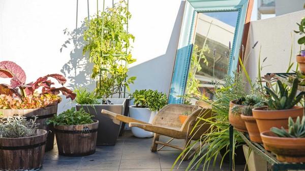 Best Gardening Designs
