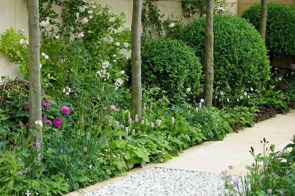 Container Gardening Designs