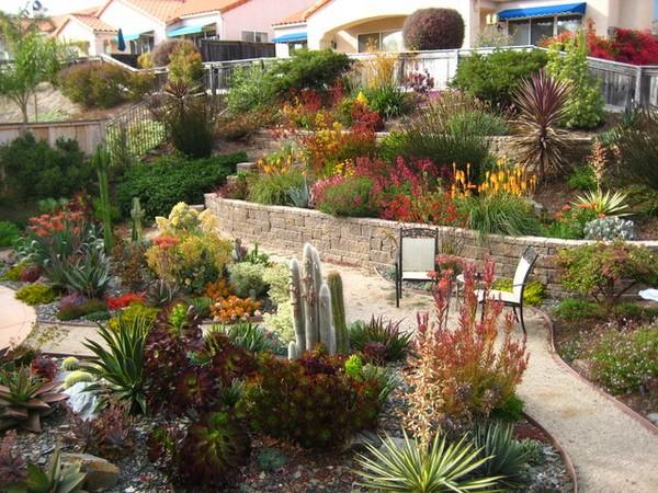 Drought Tolerant Gardening Design