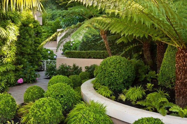 Eco-Friendly Gardening Ideas