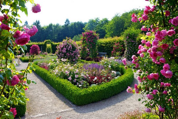 100 Most Creative Gardening Design Ideas [2019] - Planted Well Rose Garden Design Perennial on full sun garden design, rock garden design, vegetable garden design, formal garden design, butterfly garden design, english garden design, ground cover garden design, grass garden design, flower garden design, desert garden design, lawn garden design, deck design, patio design, fireplace design, living room design, cottage garden design, pergola design, rose garden design, border design, small garden design,