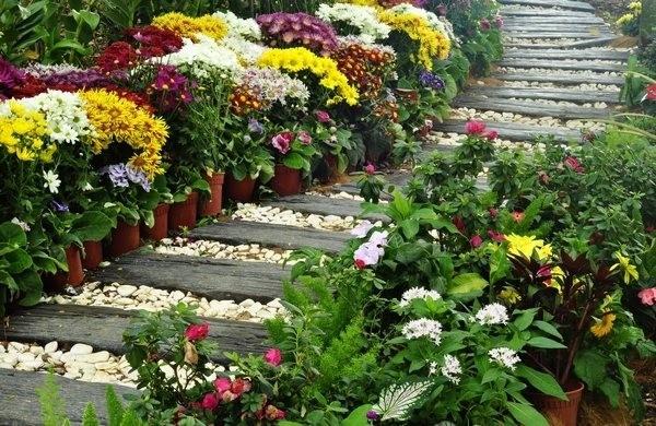 Home Gardening Designs
