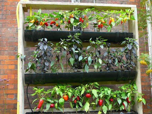 ideas off gardenfeat easy gardening grid world diy vertical garden