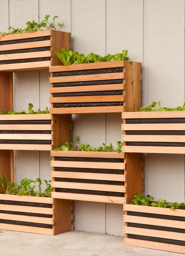 Simple Vertical Gardening DIY