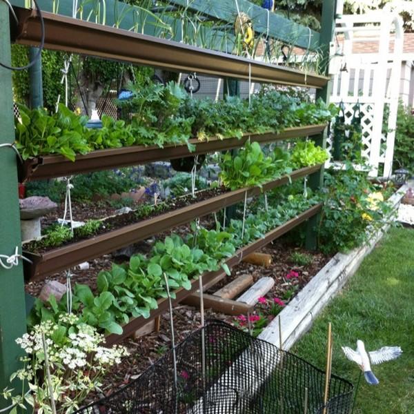 Outdoor Vertical Gardening