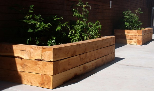 15 Unique Landscaping Timber Projects and Ideas - Planted Well