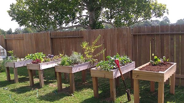 Landscaping Timbers Walmart
