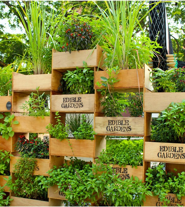 Vertical Gardening Boxes