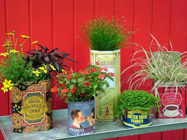 Vertical Gardening Designs