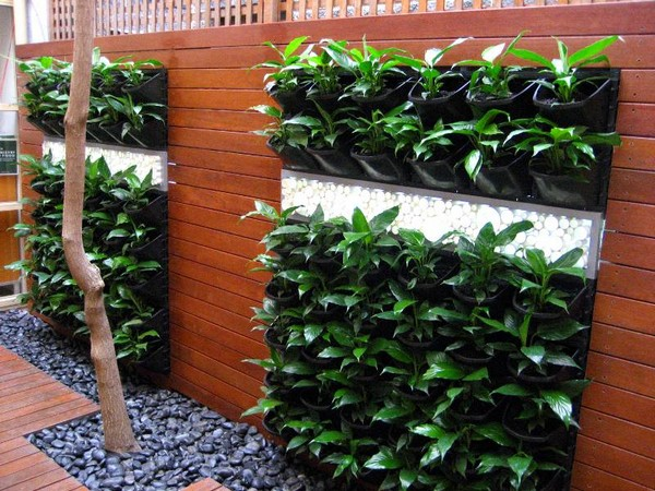 Vertical Vegetable Gardening Ideas