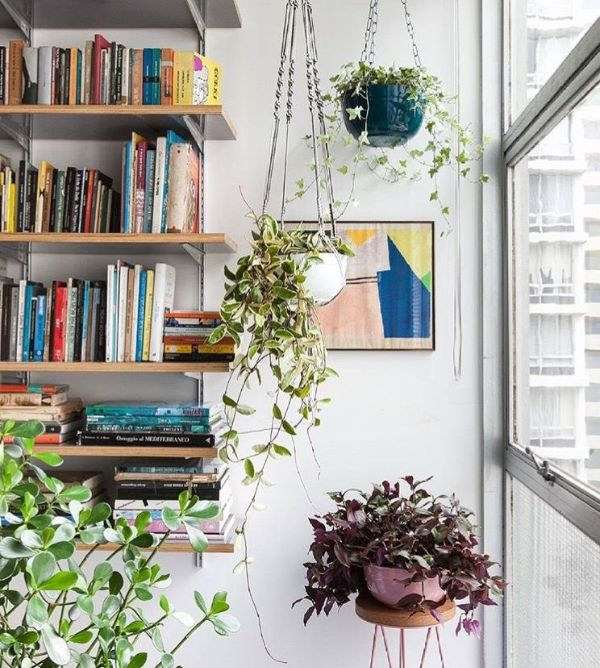 Indoor Apartment Gardening Ideas