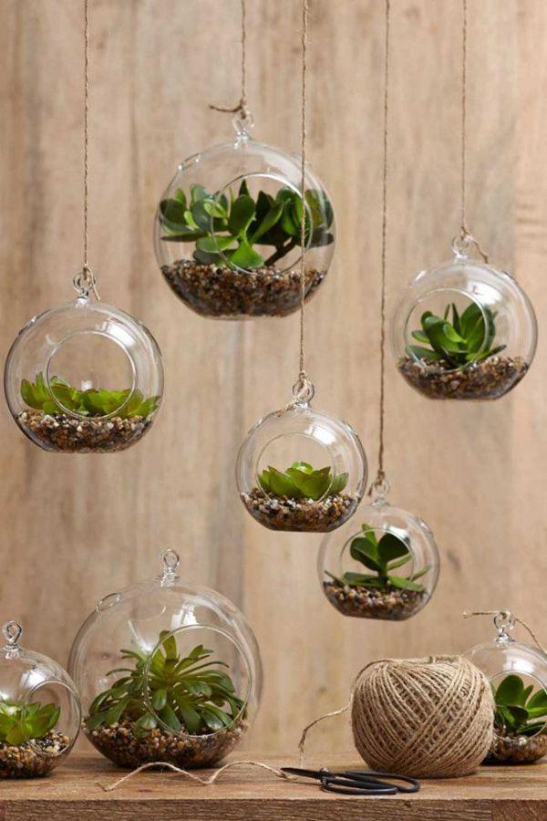 21+ Best Indoor Gardening Ideas for Beginners and Advanced Gardeners ...