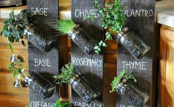 Indoor Gardening Ideas For Beginners