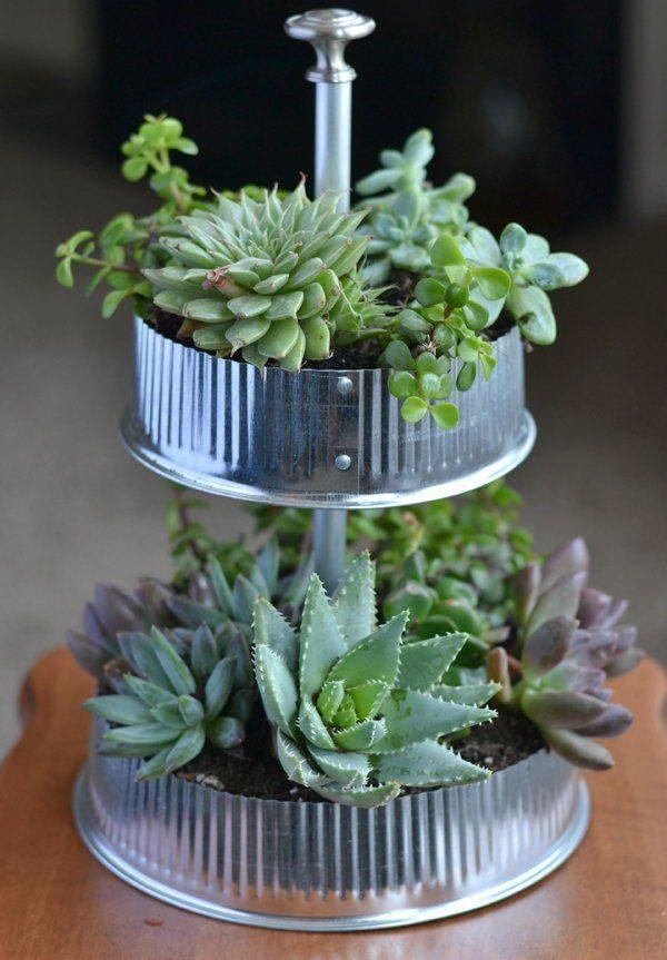 Indoor Gardening Ideas Kit
