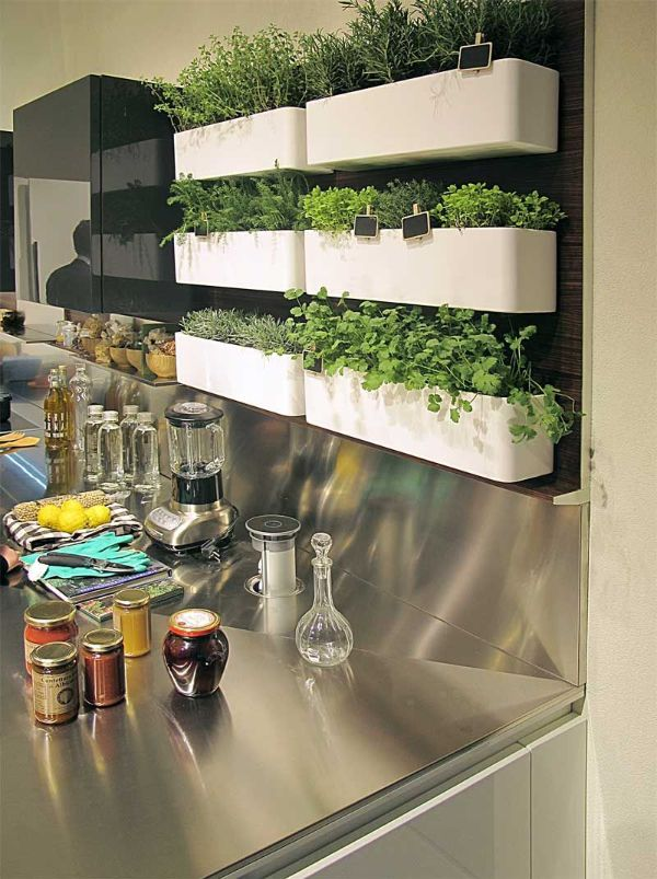 Indoor Gardening Kitchen Ideas
