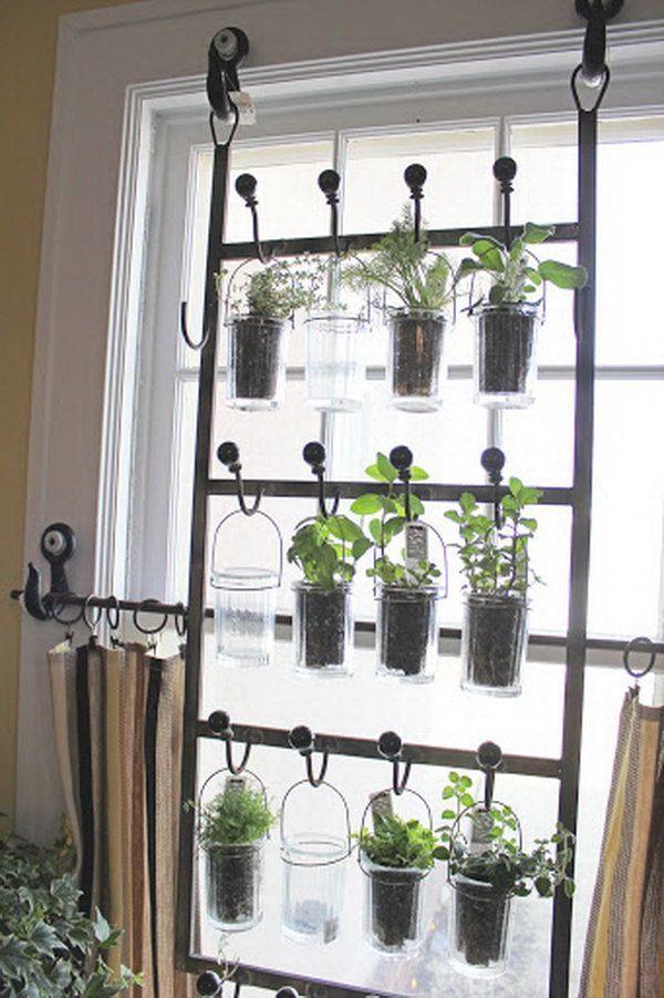 Indoor Gardening Kit