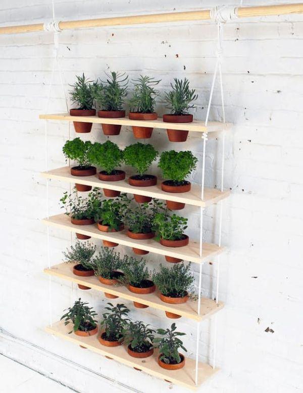 15 Best Indoor Gardening Ideas For Beginners And Advanced Gardeners