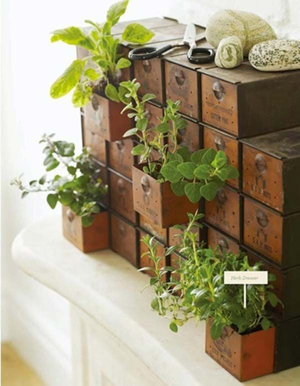 Indoor Gardening Boxes