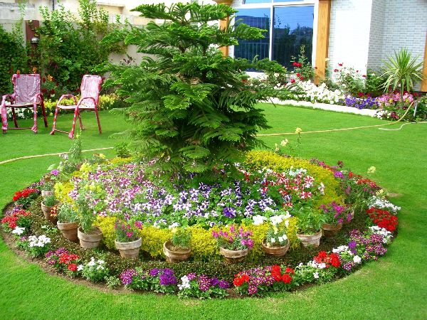 Elegant Cut Flower Garden