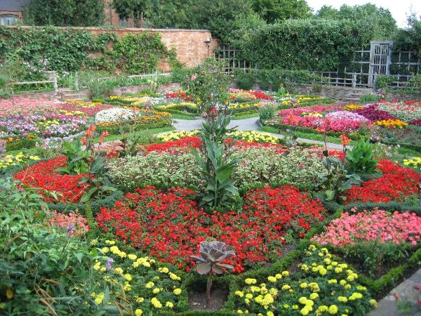 15 Fascinating Flower Garden Designs and How to Start One