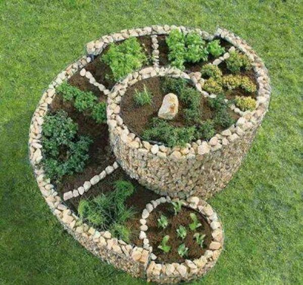 Rock Garden Herbs