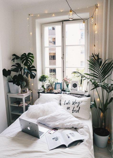 Plants For Bedroom 30 Best Bedroom Plants To Improve Sleep Quality