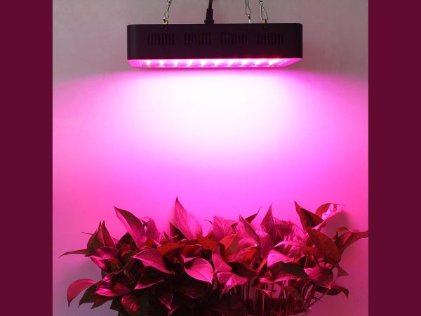 Grow Light Indoor Gardening Ideas