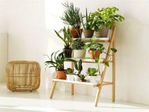 Reddit Indoor Gardening Kit