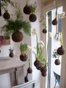 Reddit Indoor Gardening Store