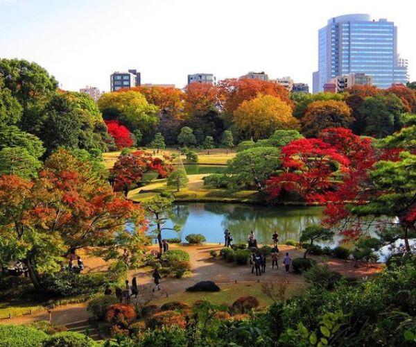 Best Japanese Garden In Tokyo