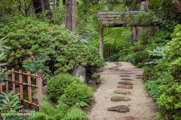 Japanese Garden Gravel