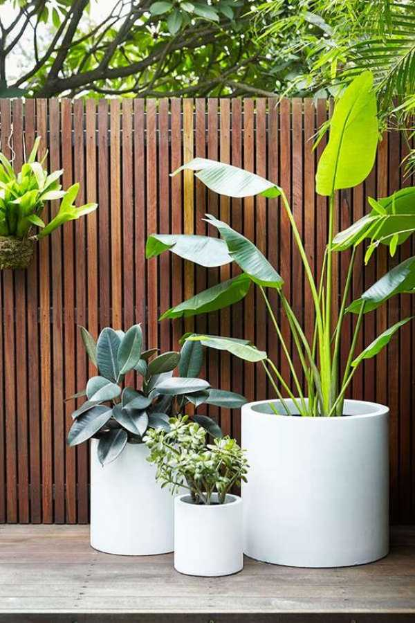 Plant Pots At Home Depot