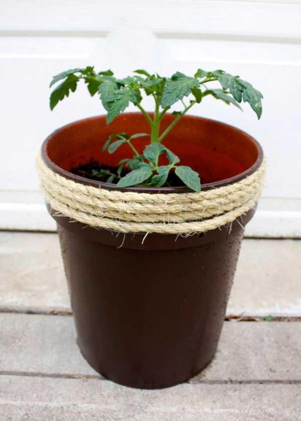 Plant Pots Black