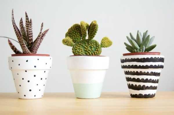 Plant Pots Decorative