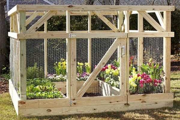 Raised And Enclosed Garden Bed